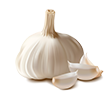 garlic_PNG12765
